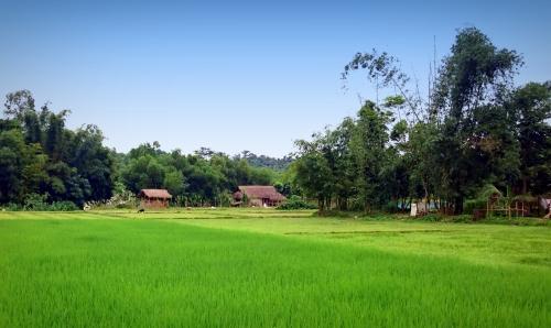 Một ngôi làng ở vùng đông bắc Bangladesh, không khác mấy cảnh ở Vietnam