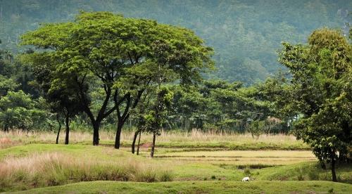 Một xóm nhỏ nằm sát chân núi, cũng là nơi đường biên giới với Ấn độ chạy qua.